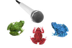 Coloured frogs near microphone isolated Royalty Free Stock Photography