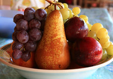 Coloured fruit. In this picture, the colorful fruit is placed on a plate. There's black grapes, a peach, red plums and a pear yellow. It seems very juicy and Stock Images
