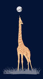 Coloured giraffe Stock Images