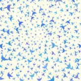 Coloured illustration with decorative birds flying to the centre Royalty Free Stock Photo