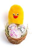 Coloured jajek, bazy i koloru żółtego kurczak, - symbol wielkanoc Obraz Stock