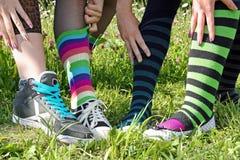 Coloured knee socks. With wander royalty free stock photos