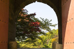 Coloured leaves on tree visible through east gate Stock Image