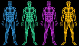 Coloured male bodies Royalty Free Stock Photos