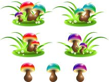 Coloured mushrooms. Mushrooms in different colors on piece of grass and single Stock Photos