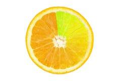 Coloured orange slince Stock Photography
