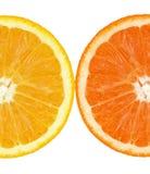 Coloured Orange Slince Royalty Free Stock Image