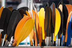 Coloured Paddles Stock Photos