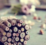 Coloured pencil, colouful crayon Stock Photography