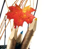 Coloured pencils in basket. Autumn composition with leaf: coloured pencils in basket on white background royalty free stock photos