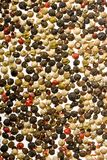 Coloured pepper Stock Photography