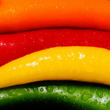 Coloured peppers Stock Image
