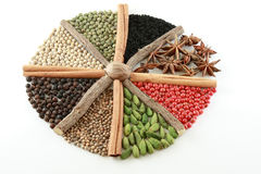 Coloured spice oktogon Royalty Free Stock Photos