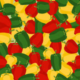 Coloured Sweet Pepper Pattern. Seamless Background With Ripe Pep Stock Image