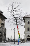 Coloured tree. A coloured tree, winter time, in the Ovidiu Square, Constanta, Romania stock image