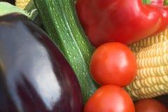 Coloured Veg Stock Image