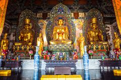 Coloured woodcarving rzeźby Mahavira Hall Up-Huayan świątynia (Hall ceremonia) Zdjęcie Royalty Free