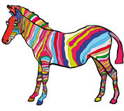 Coloured zebra. Zebra decorated with multicoloured stripes Royalty Free Stock Image