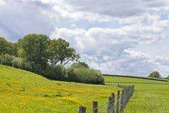 Colourful łąka, pola graniczył z ogrodzeniem w wsi fotografia royalty free