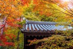 Colourful świątynia dach w Kyoto i, Japonia Zdjęcie Royalty Free