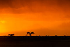 Free Colourful African Sunrise In South Africa Stock Photo - 44815410