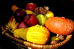 Colourful apples, nuts and pumpkin in a wooden basket isolated on black background - autumn still life stock photos