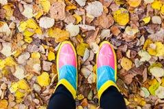 Colourful autumn. Colourful boots on autumn leafs Stock Photos