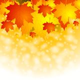 Colourful autumn background Stock Photo
