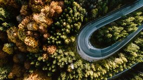 Free Colourful Autumn Landscape Aerial View Of Empty Asphalt Roads, Trees With Yellow And Orange Leaves. Europe Roads Details Royalty Free Stock Photo - 161946005