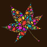 Colourful Autumn Leaves Stock Image