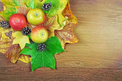 Colourful autumn leaves, apples and pinecones on a wooden surface background. Stock Photography