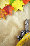 Colourful autumn leaves and pinecones on a striped paper background. Royalty Free Stock Photos