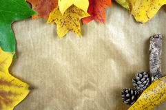 Colourful autumn leaves and pinecones on a striped paper background. Royalty Free Stock Image