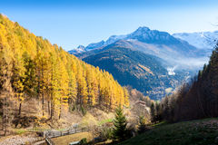 Colourful autumn morning in the Alps Mountain Royalty Free Stock Photography