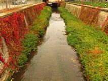 "Vibrant colourful autumn. Autumn river banks. Tiny Tuchenitsa's river tributary Barata, literally ""The Streamlet"". Vibrant colourful autumn royalty free stock photography"