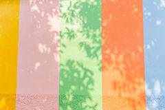 Colourful background. Tree shadow in colourful background royalty free stock photos