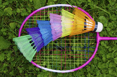 Colourful badminton Stock Photo