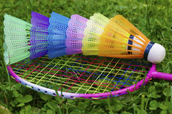 Colourful badminton Royalty Free Stock Photo