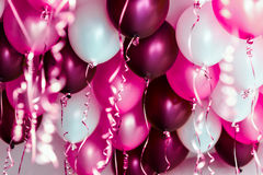 Colourful balloons, pink, white, red, streamers isolated Royalty Free Stock Photo