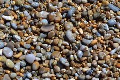 Colourful Beach Pebbles. Colourful and wet pebbles on a beach Royalty Free Stock Images