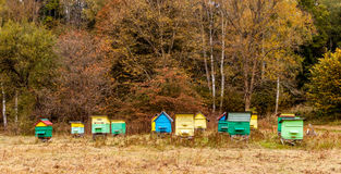 Colourful beehives. Royalty Free Stock Photo