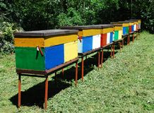 Colourful Beehives Royalty Free Stock Image