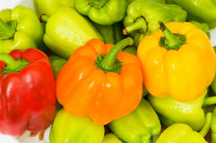 Colourful bell peppers. Arranged at the market stand Royalty Free Stock Photos