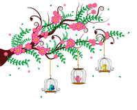 The Colourful Bird Cages. Are hanging on the tree Stock Photography