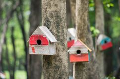 Colourful birdhouse in the green garden royalty free stock photography