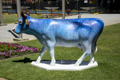 Colourful Blue painted cow at Supreme Court Gardens in Perth Cit Royalty Free Stock Images