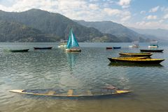 Colourful boats scattered on the Phewa Tal Lake in Pokhara, Nepal. Colourful boats scattered on the Phewa Tal Lake in the early morning, including two sunken Royalty Free Stock Images