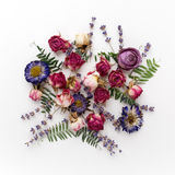 Colourful bright pattern made of dried flowers. Flat lay, top view Royalty Free Stock Image