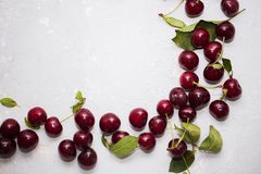 Colourful bright pattern with ripe cherry and leaf. stock photography