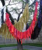 Colourful bright ribbons on a tree Stock Photography